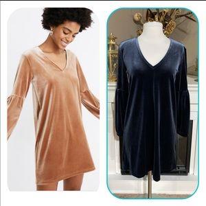 Madewell Blue Velvet Balloon Sleeve Dress